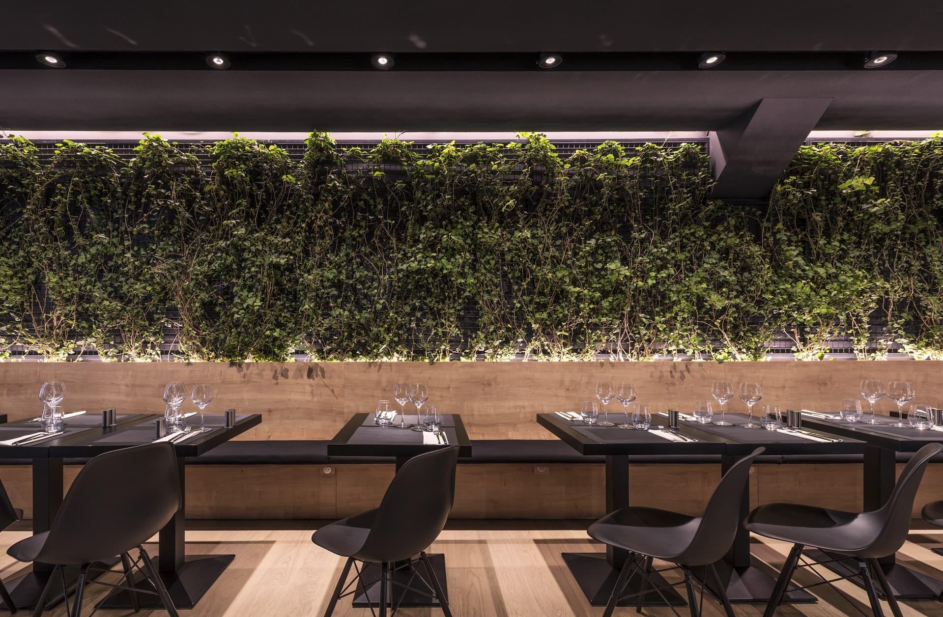 Eclairage du mur végétale de l'italien