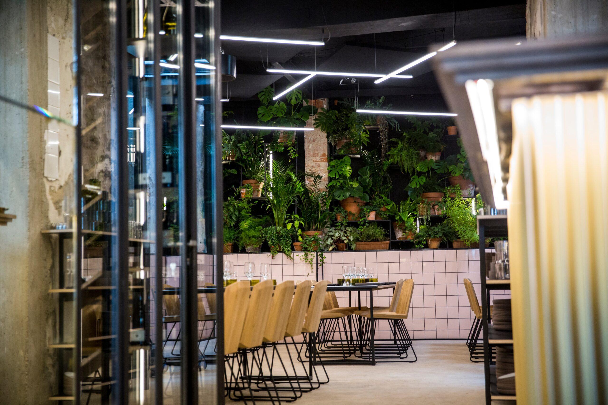 Focus sur les luminaire du restaurant Matière Brut