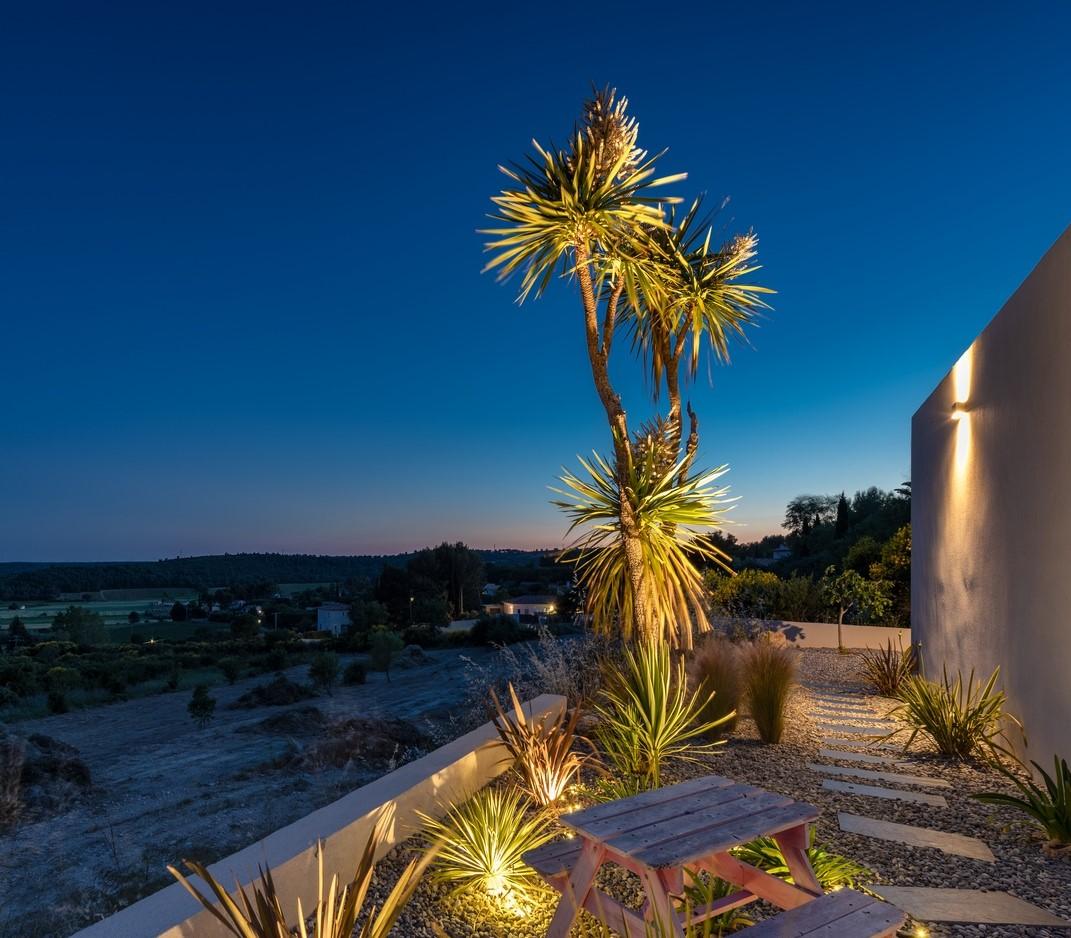 Eclairage d'un palmier dans la villa privée Bravo