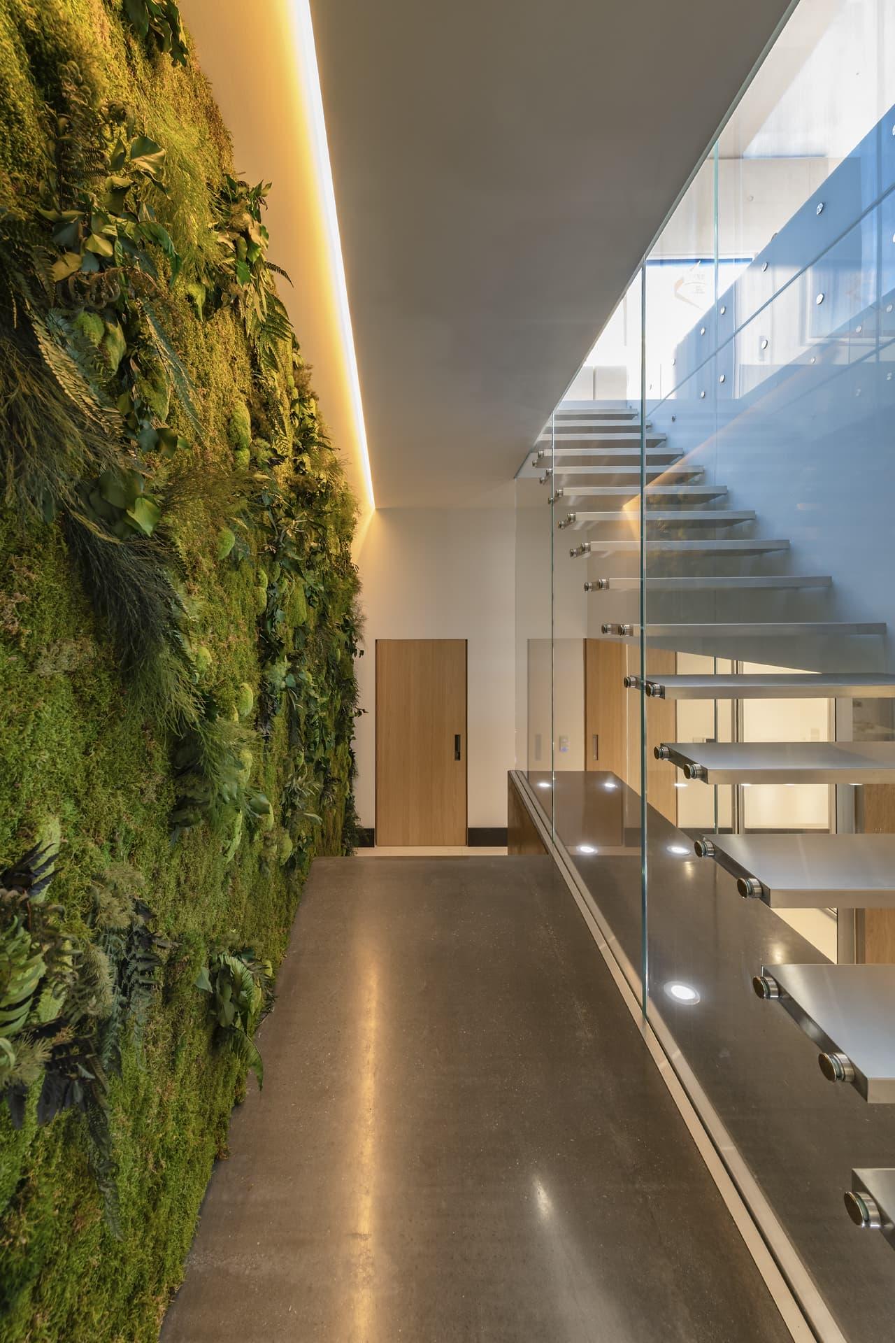 Gorge lumineuse au dessus d'un mur végétal à coté des escalier dans la villa privée Sigma